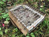 CasusGrill - jednorázový ekologický gril